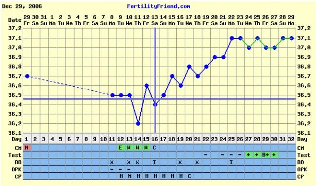 Беременные графики по дням