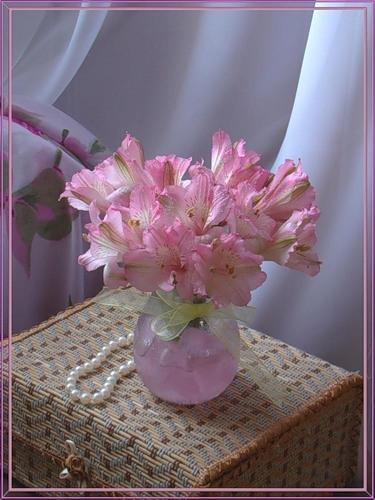Цветы: предпросмотр.
