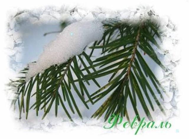 http://forum.materinstvo.ru/uploads/1264885002/post-28573-1265002391.jpg