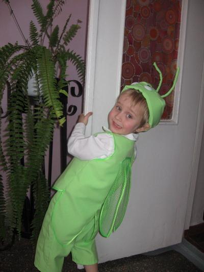 Костюм насекомого для мальчика своими руками сшить