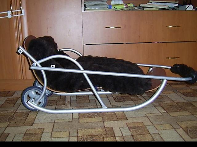 Например колесики прикрутить, чтобы можно было через дорогу по асфальту...