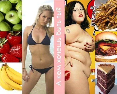 Тест какая диета тебе подходит онлайн бесплатно