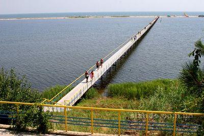 Санатории военный приморского края