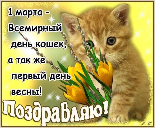 поздравления с 1 марта день кошек уже писал