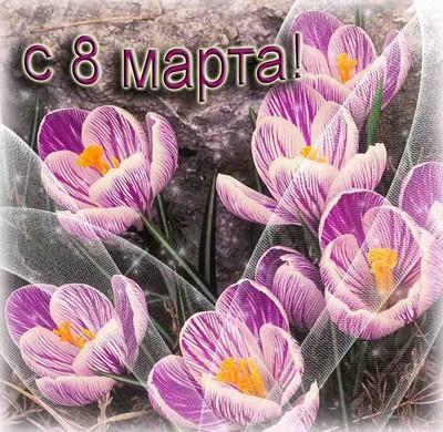 http://forum.materinstvo.ru/uploads/journals/1267907255/j38482_1267912836.jpg