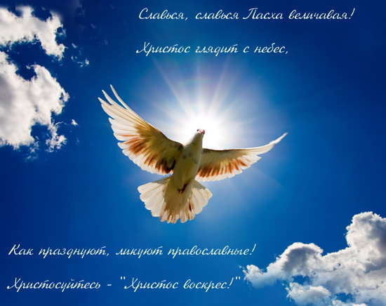 http://forum.materinstvo.ru/uploads/journals/1270324102/j38482_1270369485.jpg