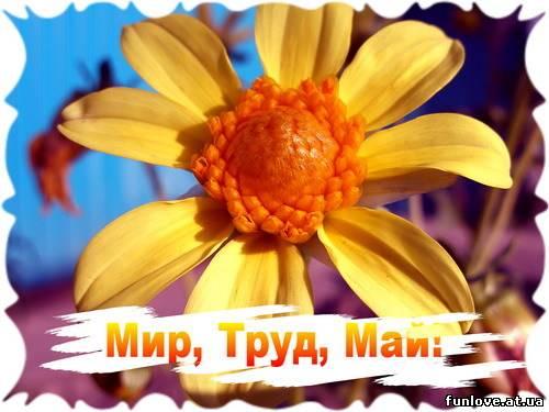 http://forum.materinstvo.ru/uploads/journals/1272614892/j38482_1272657058.jpg