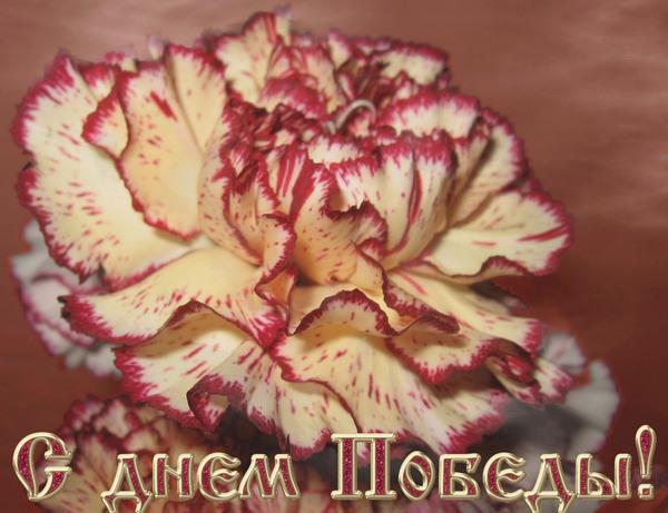http://forum.materinstvo.ru/uploads/journals/1273266858/j38482_1273316689.jpg