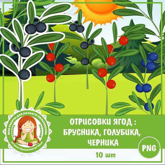 Отрисовки: Лесные ягоды
